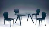 方桌T8046+椅C1165